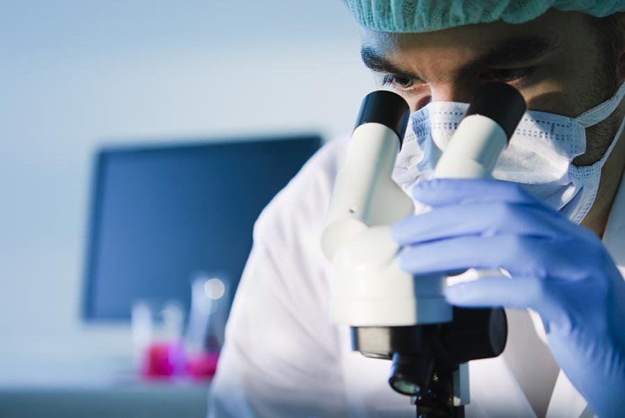 Scientific Research - microchirurgia